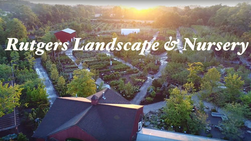 Watch the Rutgers Landscape & Nursery Video