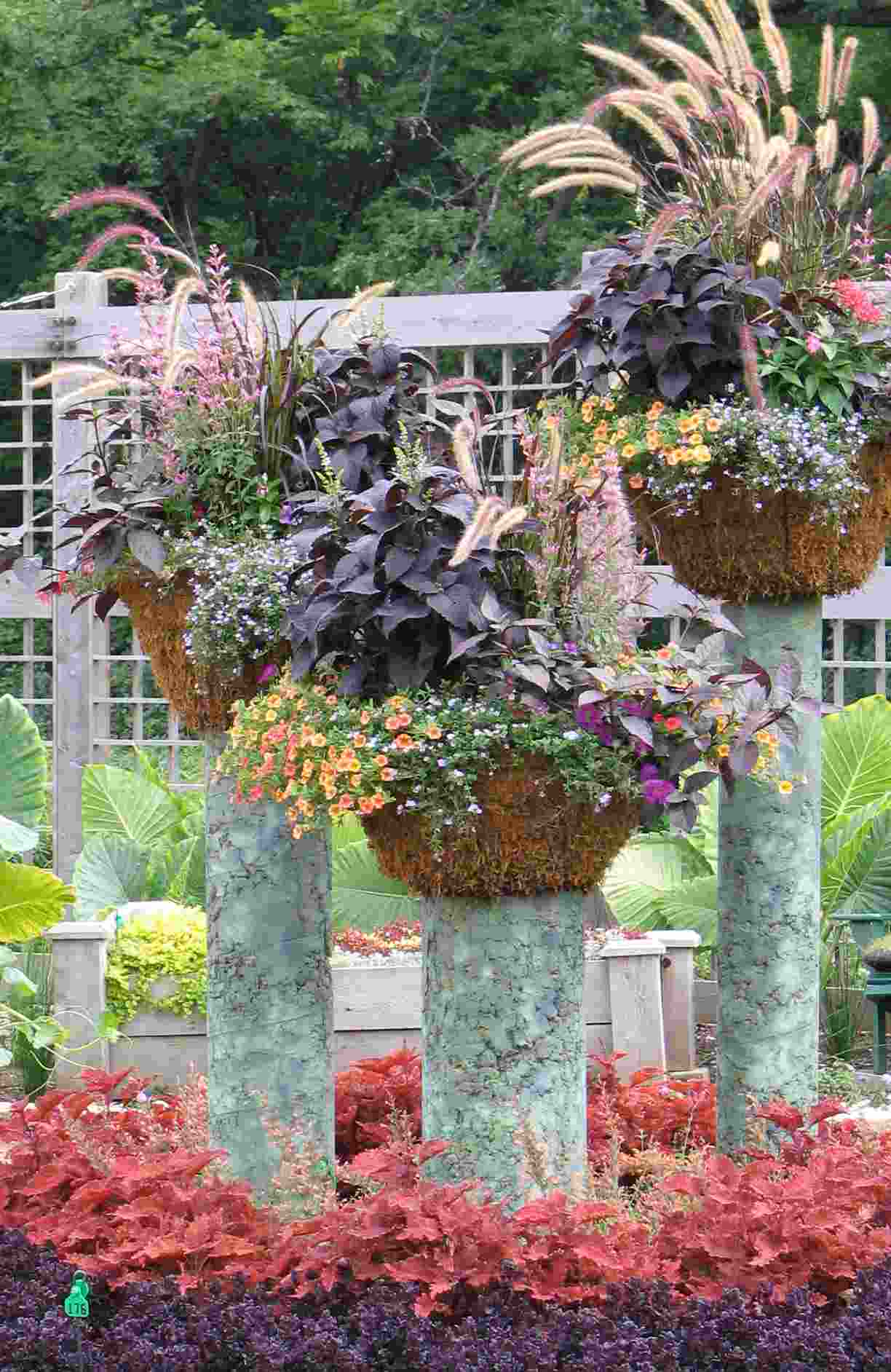 Container gardening blog rutgers landscape nursery for Garden design ideas with pots